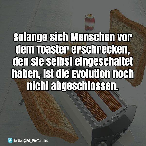 https://www.android-hilfe.de/attachments/toaster-spruch-menschen-lustig-bilder-whatsapp-bilder-erschrecken-cool-neu-9729875479-jpg.596487/
