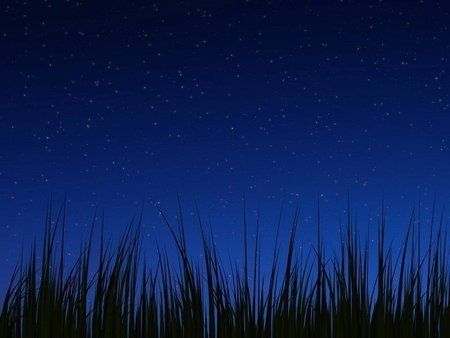 wallpaper_grass_night.jpg