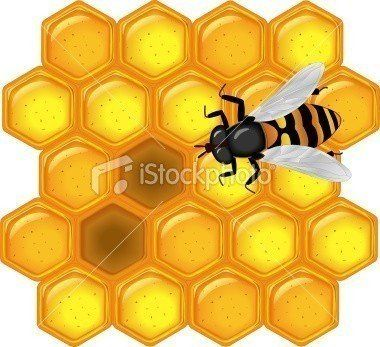 ist2_7808145-golden-honeycomb-with-bee.jpg